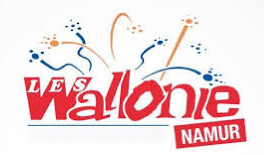 Quartiers, Folklore, Fanfares, les Wallos en Folie, à Namur, du 07 au 16 Septembre