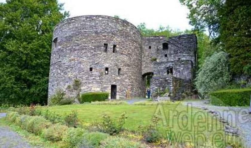 Chateau des comtes de Salm_3403