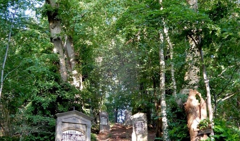 Le sentier du poudingue à Malmedy
