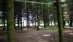 Jeu dans le bois