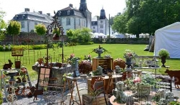 Brochante au chateau de Deulin