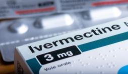 plus de preuves pour l'ivermectine que pour les vaccins